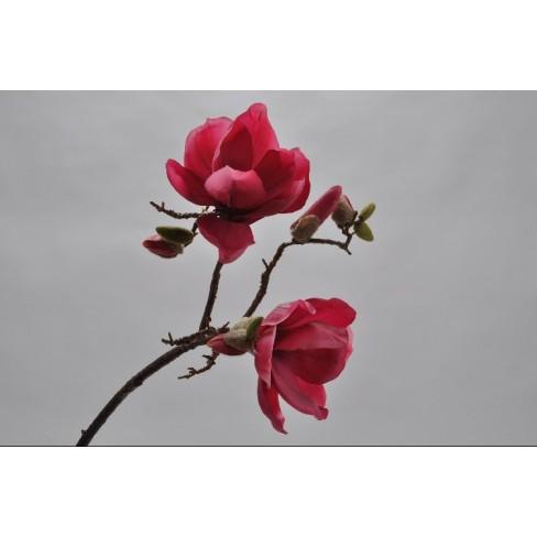 Изкуствено цвете магнолия 73см цвят циклама