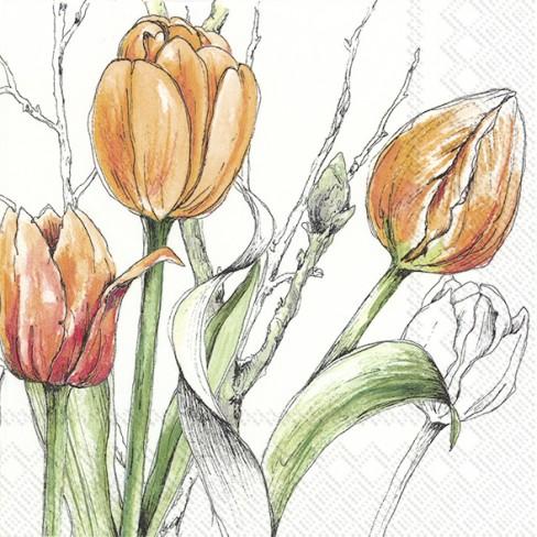 Салфетки 20бр Colourful Tulips оранж