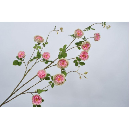 Клонка цъфнали рози 150см розово/зелена
