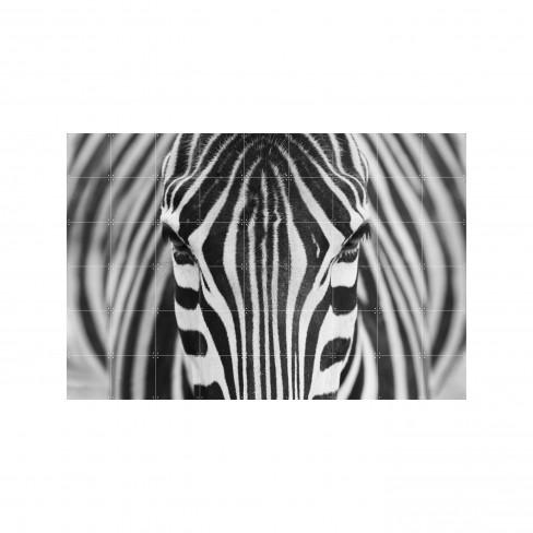 Пъзел за стена Ixxi 120х80см Zebra S