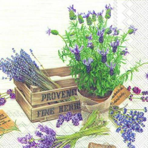 Салфетки лавандула в саксия The Flavour Of Provence