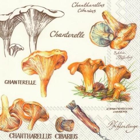 Салфетки трипластови 20 бр Chanterelle
