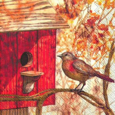 Салфетки трипластови 20 бр Birdhouse