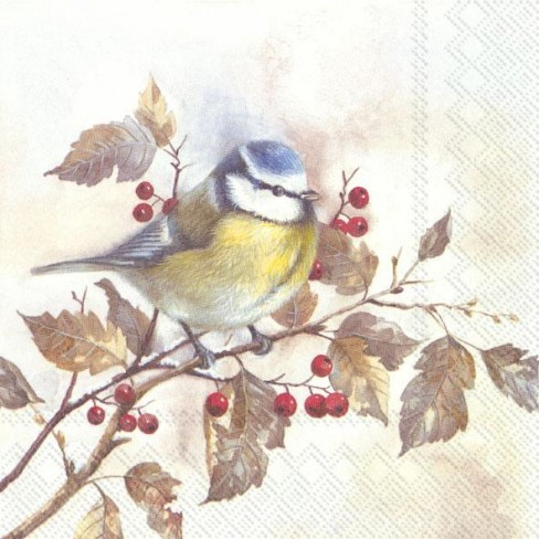Салфетки трипластови 20 бр Sweet Little Bird